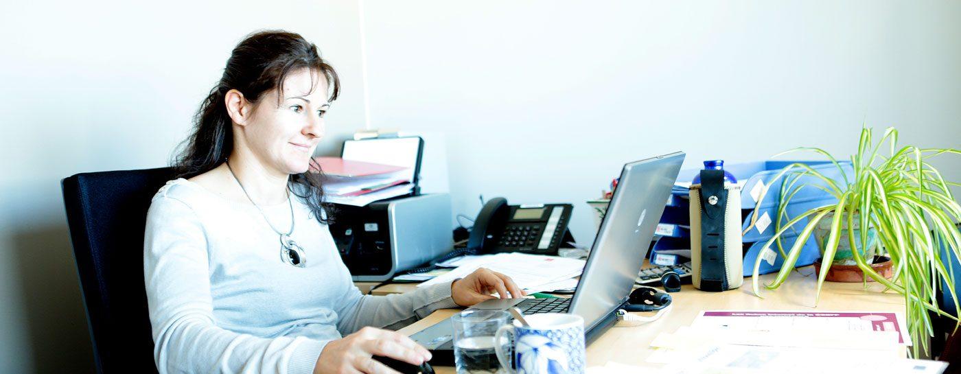 Le Tram Annemasse - Geneve > Professionnels