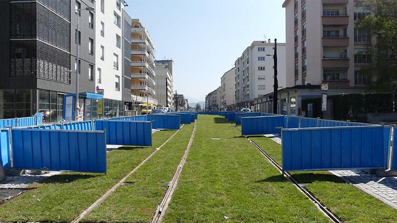 Gazon rue de Genève